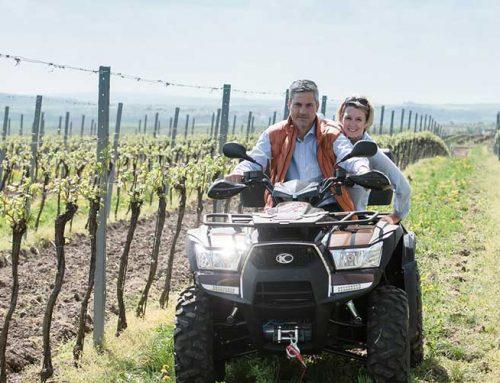 Retzer Weinwoche: Sensationeller Erfolg
